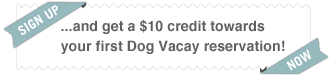 DogVacay sign up credit